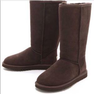 UGG Boots (Tall Chocolate Brown)